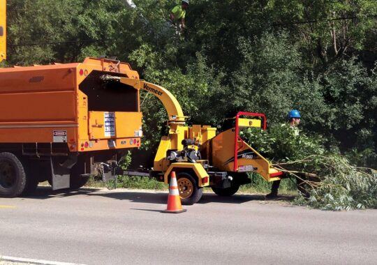 Commercial Tree Services-Homestead FL Tree Trimming and Stump Grinding Services-We Offer Tree Trimming Services, Tree Removal, Tree Pruning, Tree Cutting, Residential and Commercial Tree Trimming Services, Storm Damage, Emergency Tree Removal, Land Clearing, Tree Companies, Tree Care Service, Stump Grinding, and we're the Best Tree Trimming Company Near You Guaranteed!