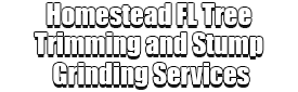 Homestead FL Tree Trimming and Stump Grinding Services Logo-We Offer Tree Trimming Services, Tree Removal, Tree Pruning, Tree Cutting, Residential and Commercial Tree Trimming Services, Storm Damage, Emergency Tree Removal, Land Clearing, Tree Companies, Tree Care Service, Stump Grinding, and we're the Best Tree Trimming Company Near You Guaranteed!